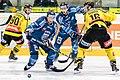 Vienna Capitals vs Fehervar AV19 -105.jpg