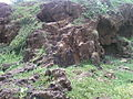 View of Air and water eroded Khondalite rocks at Tenneti Park1.jpg