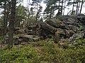 Viherlaakso, 02710 Espoo, Finland - panoramio (1).jpg