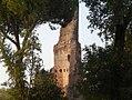 Villa Gordiani - Tor de' Schiavi 7.jpg