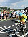 Vincenzo Nibali, 2014 Tour de France, Stage 20.jpg