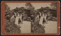 Vine Clad Arbor, from Robert N. Dennis collection of stereoscopic views.png