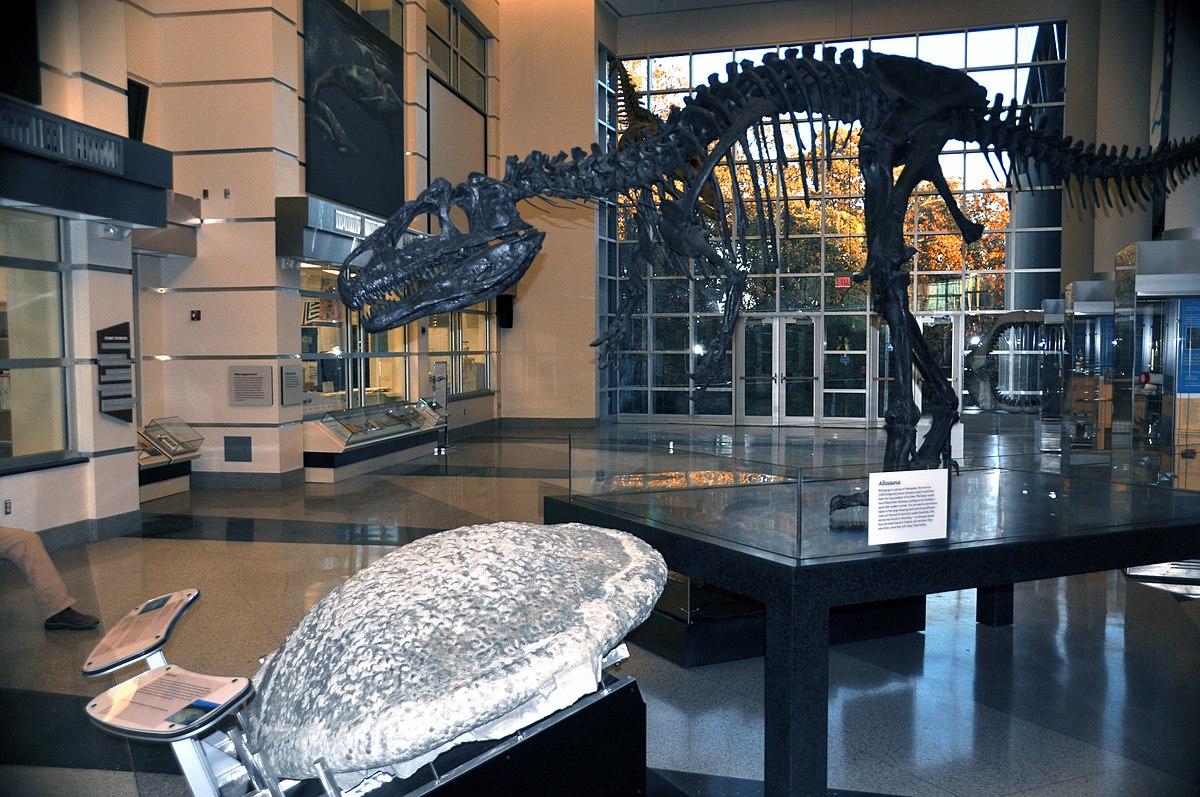 Joe Keiper Virginia Museum Of Natural History
