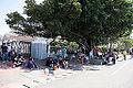 Visitors Rest under Banyans of Zuoyang Naval Base 20141123.jpg