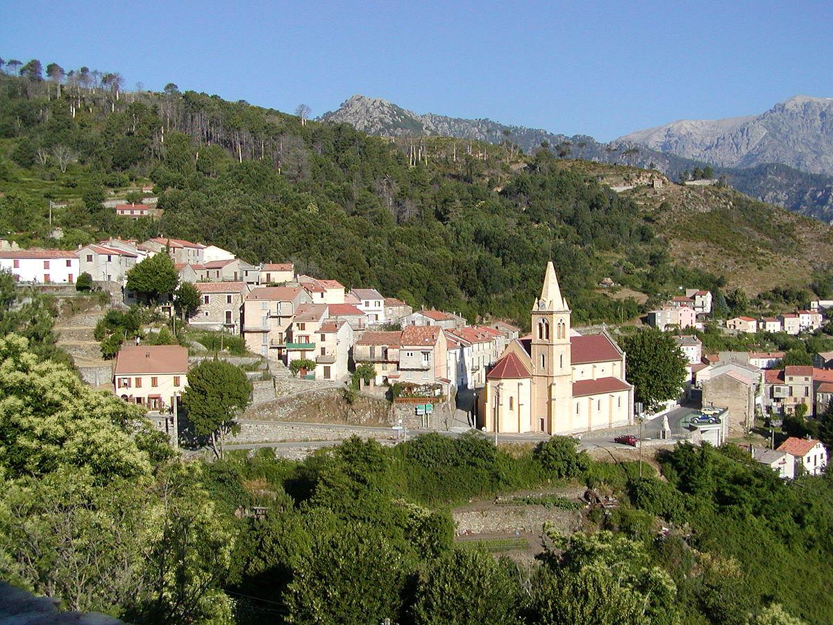 Vivario - Wikipedia