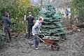 Volunteering (8619073191).jpg