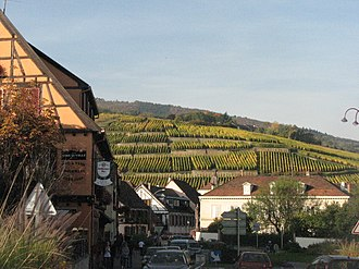 Alsace Grand Cru AOC - Geisberg, located just outside the village Ribeauvillé, is one of the 51 Grand Cru vineyards of Alsace.