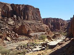 Wadi Archei in the Ennedi Mountains - northeastern Chad 2015.jpg