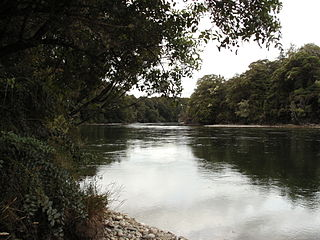 Waiau River (Southland) river in New Zealand