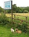 Waiting at Chagford Swimming Pool - geograph.org.uk - 915792.jpg