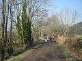 Walkers on the dismantled railway - geograph.org.uk - 692420.jpg