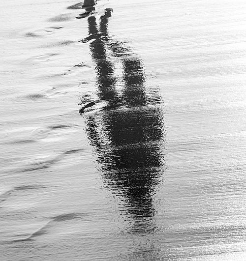 صورقد لا تفهمها 500px-Walking_reflec