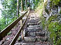 Wanderweg Karren-Staufenalpe - panoramio.jpg