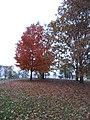 Warren County, New Jersey (8457671473).jpg
