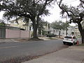 Washington Ave Uptown NOLA Jan 2012 Back from Prytania.JPG