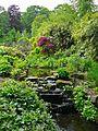 Water garden 1 (2537389670).jpg