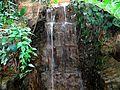 Waterfall in Bolz Conservatory - panoramio.jpg