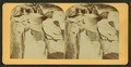 Waterfalls, from Robert N. Dennis collection of stereoscopic views.png