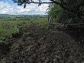 Watering Spot - geograph.org.uk - 487664.jpg