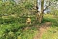 Weener - Hessepark - Hessepark 049 ies.jpg