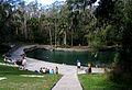 Wekiwa Springs State Park - Spring.jpg