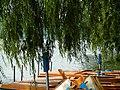 West Lake 西湖 - panoramio (1).jpg