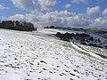 West Woodhay Down - geograph.org.uk - 762431.jpg