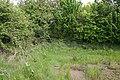 Wet corner - geograph.org.uk - 795408.jpg