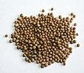 White mustard seeds.jpg