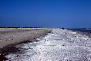 Gulf beach near Sabine Pass.