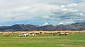 Widoki mongolskiego krajobrazu widziane z minibusa Karakorum - Ułan Bator (05).jpg
