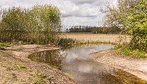 Wijnjeterper Schar, Natura 2000-gebied provincie Friesland 020.jpg