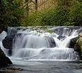 Wild Creek Falls (2).jpg