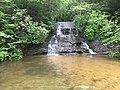 Wildcat Branch Falls South Carolina 2.jpg