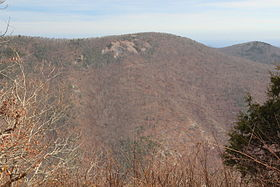 Wildcat Mountain viewed from Cowrock Mountain.JPG