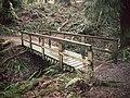 Wildwood Park, Puyallup, WA. — 04.jpg
