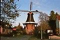 Windmolen De Stormvogel Loppersum met Dafjes (31064714514).jpg