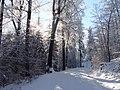 Winterwunderland - panoramio.jpg