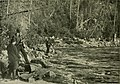 With fly-rod and camera (1890) (14782773925).jpg
