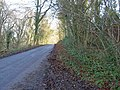 Woodland lane near the A46 - geograph.org.uk - 1076268.jpg