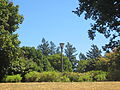 Woodstock Park in Portland, Oregon 2012 - 4.JPG