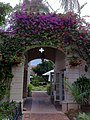Worth Avenue into Via Amore Palm Beach FL-1.jpg