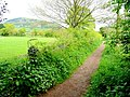 Wye Valley Walk at Dixton - geograph.org.uk - 1399927.jpg