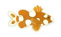 XRF-Plectorhinchus chaetodonoides2.png