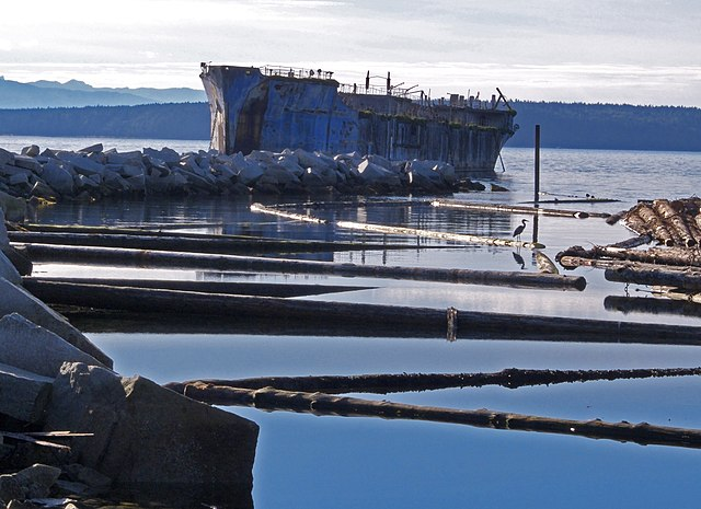 A heron sits on a log in front the YOGN 82 which is one of the 12 ships floating concrete and steel ships that comprise a floating breakwater around the Powell River Mill.