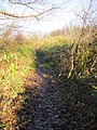 Yew Tree Road public footpath, Huyton (2).JPG