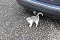 Zemianske Podhradie, mazlící se kotě (6).jpg