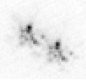 Zeta Boötis - Image: Zeta bootis short exposure