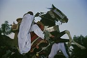Zinder sultans horsemen festival