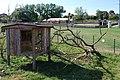 Zoologická zahrada Tábor - Větrovy (59).jpg